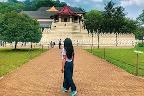 Kandy Sightseeing Day Tour from Colombo