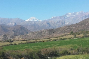 MAJESTIC ANDES & ALTITUDE WINES