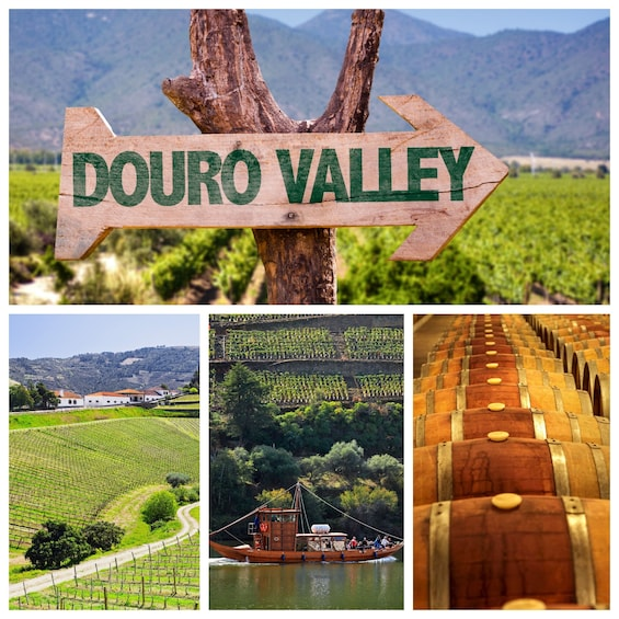 Show item 1 of 9. Douro Valley Tour: Wine Tasting, River Cruise and Lunch