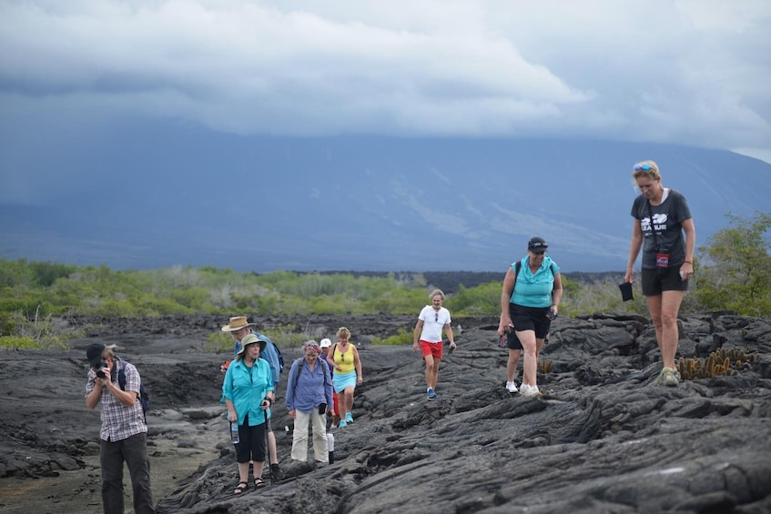 Show item 2 of 7. 6-Day Galapagos Islands plus Bike, Kayak, Hike, Snorkel