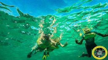 Half Day BZE Snorkel Adventure