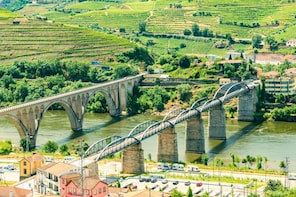 Douro Valley Tour - Wine tasting, boat and lunch from Régua
