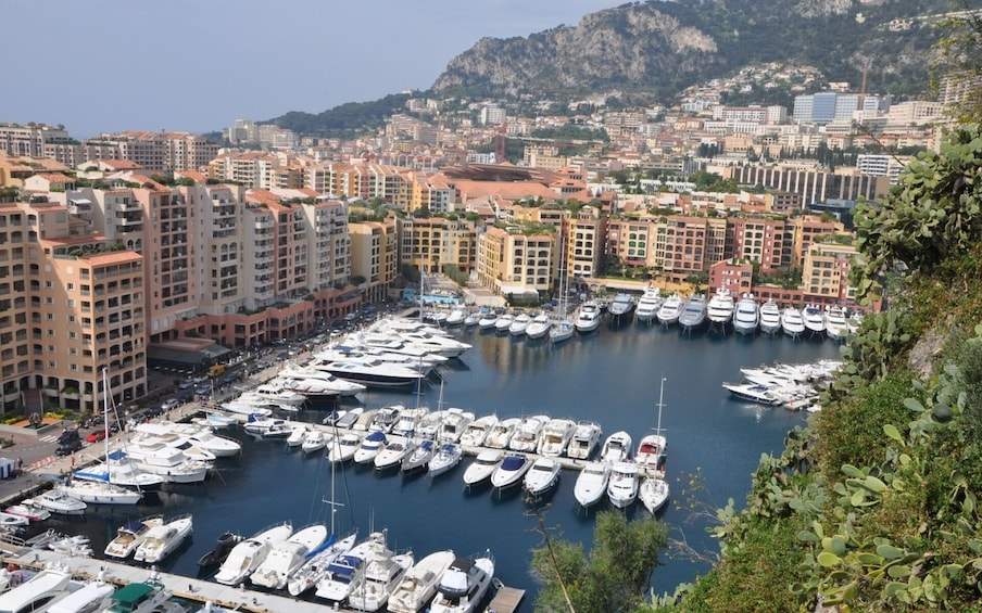 Show item 2 of 10. French Riviera Trip for Cruise Passengers