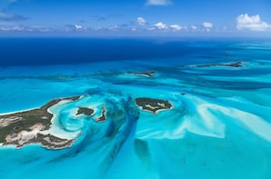 Bimini Bahamas Day Cruise & Free Transport
