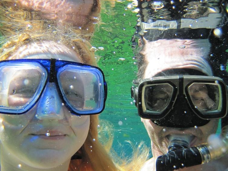 Show item 1 of 10. Alexander Springs Snorkeling