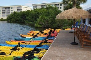 Kayak Hire - All Day