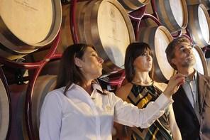 "Bolgheri: ""CLASSIC"" Winery Tour & Wine Tasting"