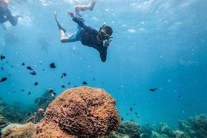 Snorkeling Boat Trip (Full-day/Haft-day)