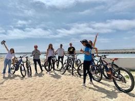 Santa Monica/Marina Del Rey electric bike Coastal Beach tour