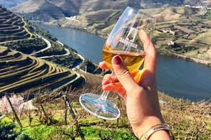 My Douro: wine tasting at 3 wineries, river cruise and lunch