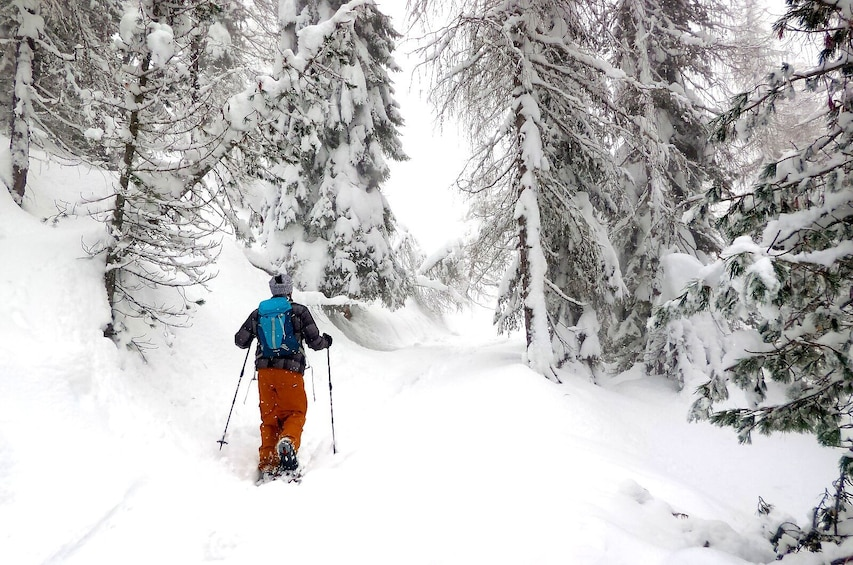 Show item 3 of 7. Snowshoe Tour in the Dolomites near Bolzano (1 day)