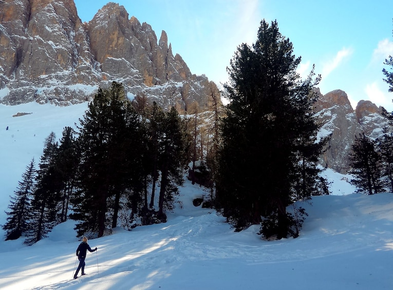 Show item 2 of 7. Snowshoe Tour in the Dolomites near Bolzano (1 day)