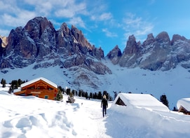 Snowshoe Tour in the Dolomites near Bolzano (1 day)
