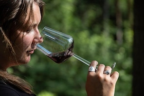 Wine in the Woods - a winetasting in forest