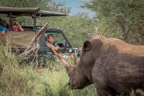 Hluhluwe-Imfolozi Park Full Day Big 5 Safari Tour