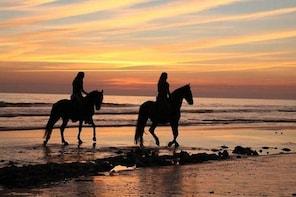Horseback Riding in Tarifa, Spain